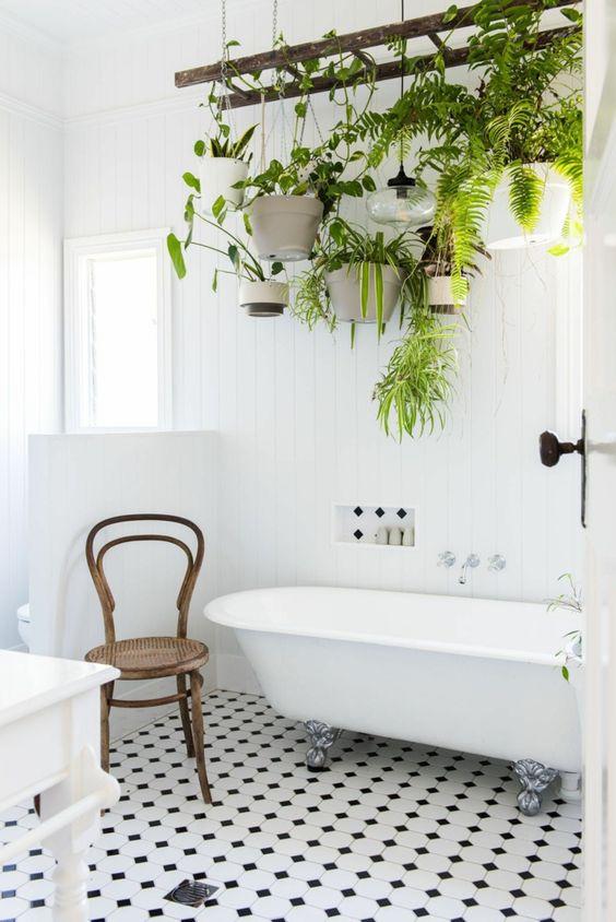 Deco Des Plantes Dans La Salle De Bain Idee Deco